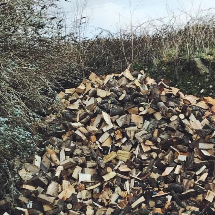 buy firewood logs in Cornwall